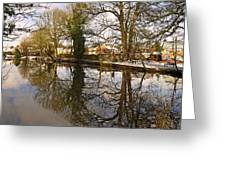 Trees Beside The Wintry Rolleston Pond Greeting Card