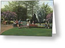 St. Louis Botanical Garden Trees Greeting Card