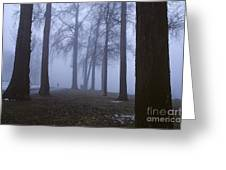 Trees Greenlake With Man Walking Greeting Card