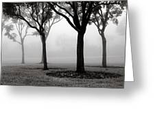 Trees In The Midst No. 06 Greeting Card