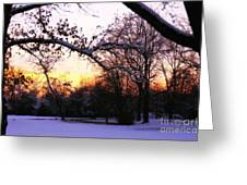 Trees In Wintry Pennsylvania Twilight Greeting Card