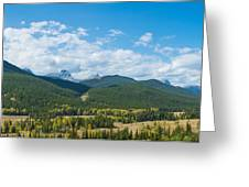 Trees On Canadian Rockies Along Route Greeting Card
