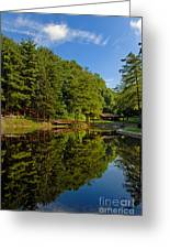 Trees Reflected On Mirrored Lake  Greeting Card by Amy Cicconi
