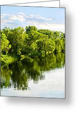 Trees Reflecting In River Greeting Card by Elena Elisseeva