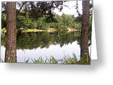 Trees Reflection Greeting Card