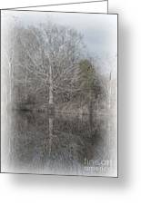 Tree's Reflection Greeting Card