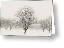 Treeternity Greeting Card