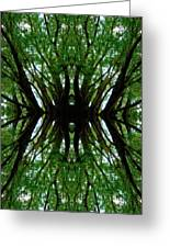 Treetops Abstract Greeting Card
