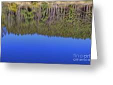 Treflections Greeting Card