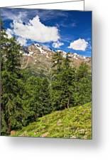 Trentino - Pejo Valley On Summer Greeting Card