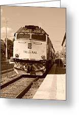 Tri Rail 808 Greeting Card
