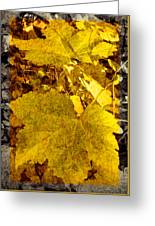 Tribute To Autumn Greeting Card