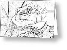 Tricia's Rose Dm  Greeting Card