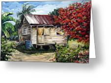 Trinidad Life 1  Greeting Card