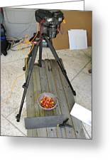 Tripod And Cherries On Floor Greeting Card