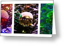 Triptych - Christmas Decoration - Featured 3 Greeting Card