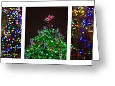 Triptych - Christmas Trees - Featured 3 Greeting Card