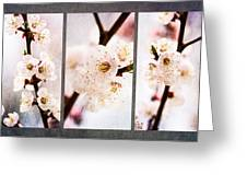 Triptych Light Of Spring 1 Greeting Card