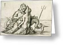 Triton With The Nereid Greeting Card