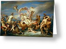Triumph Of Venus Greeting Card by Anonymous
