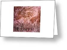 Triumph_09.23.12 Greeting Card