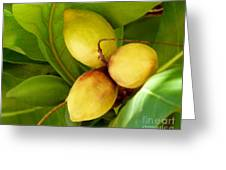 Tropical Almond Greeting Card