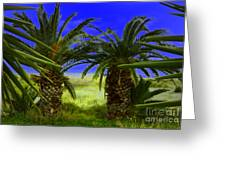 Tropical Beach Light Hdr Effect Greeting Card
