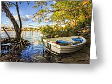Tropical Dreams Greeting Card