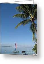Tropical Feeling Greeting Card