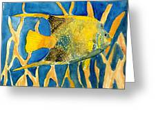 Tropical Fish Art Print Greeting Card
