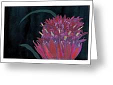 Tropical Flower Greeting Card