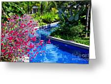 Tropical Garden Around Pool Greeting Card