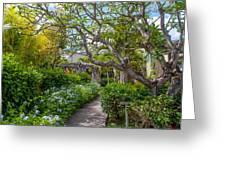 Tropical Garden. Mauritius Greeting Card