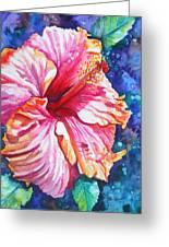 Tropical Hibiscus 4 Greeting Card