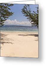 Tropical Island Beach Greeting Card