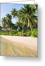 Tropical Island Beach Scenery Greeting Card