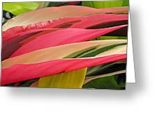Tropical Leaves Abstract 3 Greeting Card