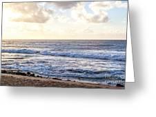 Tropical Morning  Greeting Card