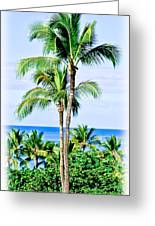 Tropical Palm Trees In Hawaii Greeting Card