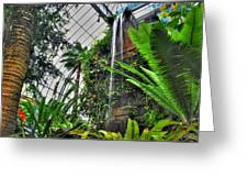 Tropical Paradise Falling Waters Buffalo Botanical Gardens Series   Greeting Card