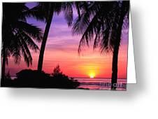 Tropical Paradise Greeting Card