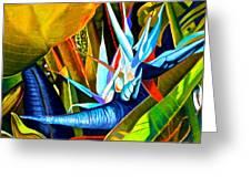 Tropical Paradise Greeting Card by Susan Robinson