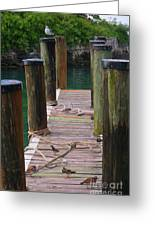 Tropical Pier Greeting Card