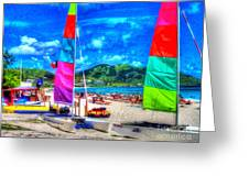 Tropical Sails Greeting Card