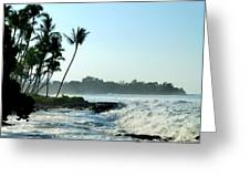 Tropical Shore Greeting Card