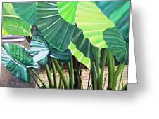Tropical Translucence Greeting Card