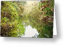Tropical Treasure Greeting Card