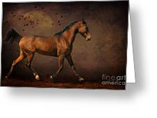 Trotting Into The Night Greeting Card