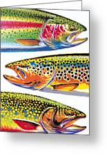 Trout Abstraction Greeting Card