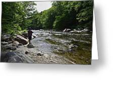 Trout Fishing Greeting Card